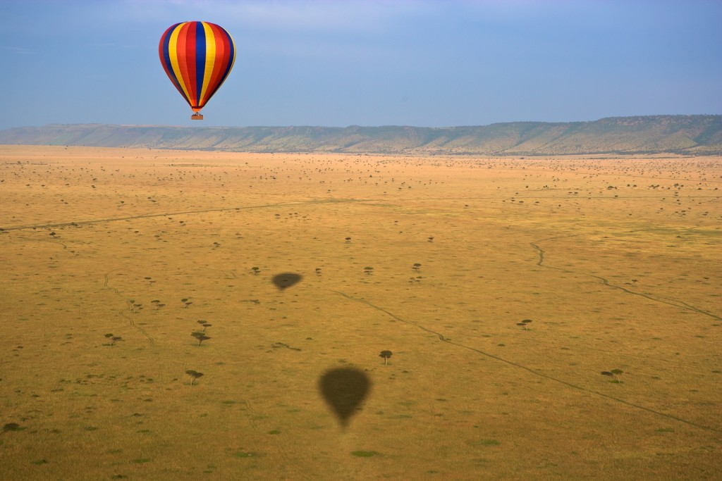 Morning Balloon Safari