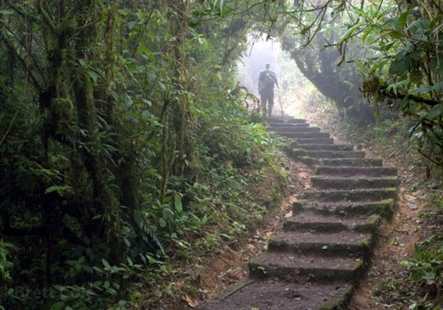 Day 11: Manuel Antonio National Park