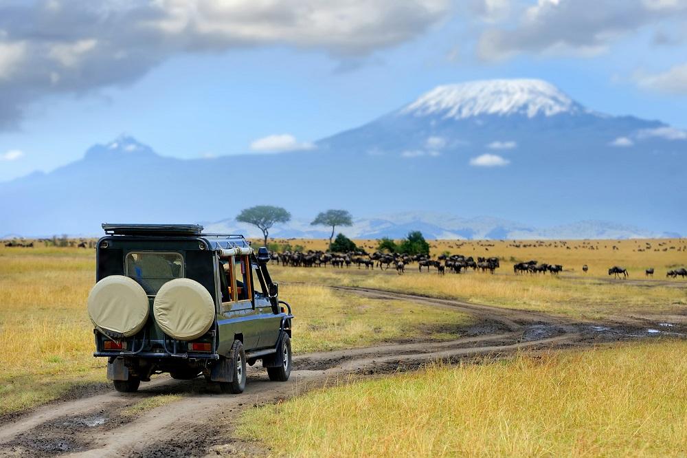 The Maasai Mara, Kenya and The Serengeti, Tanzania
