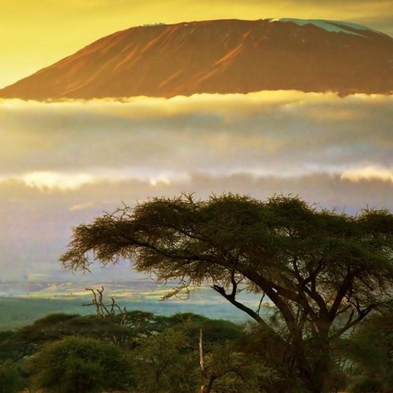 Arusha/Kilimanjaro