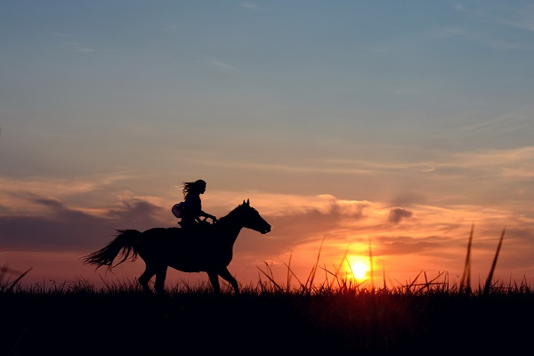 Explore the Mara on Horseback