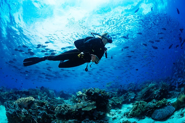 Indian Ocean Scuba Safaris